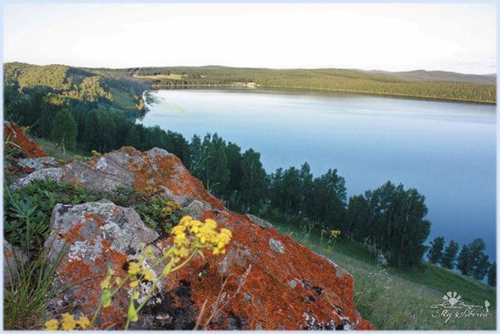 Шарыповский район озера фото инголь